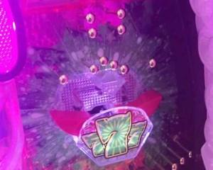 CRわくわくカーニバル 緑7電チュー