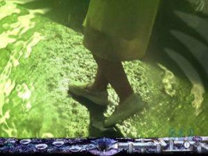 仄暗い水の底から  美津子回想予告