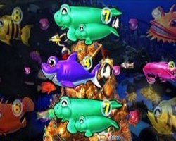 CR大海物語4BLACK 珊瑚礁系リーチ